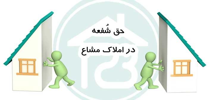 حق شفعه در املاک مشاعی و اختیاری که شریک شما دارد!